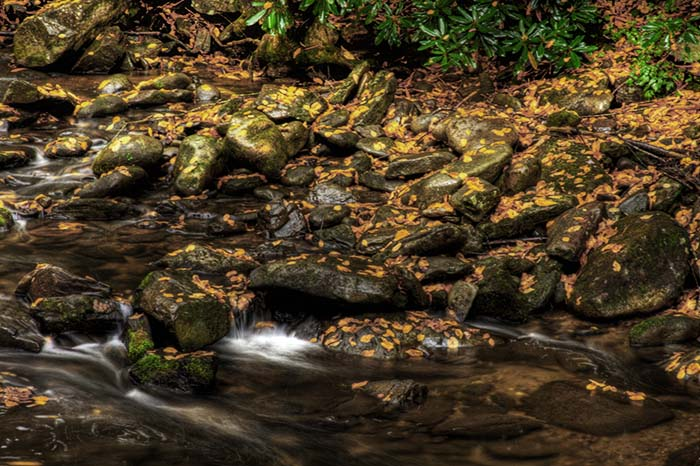Laurel Creek, Great Smoky Mountains National Park